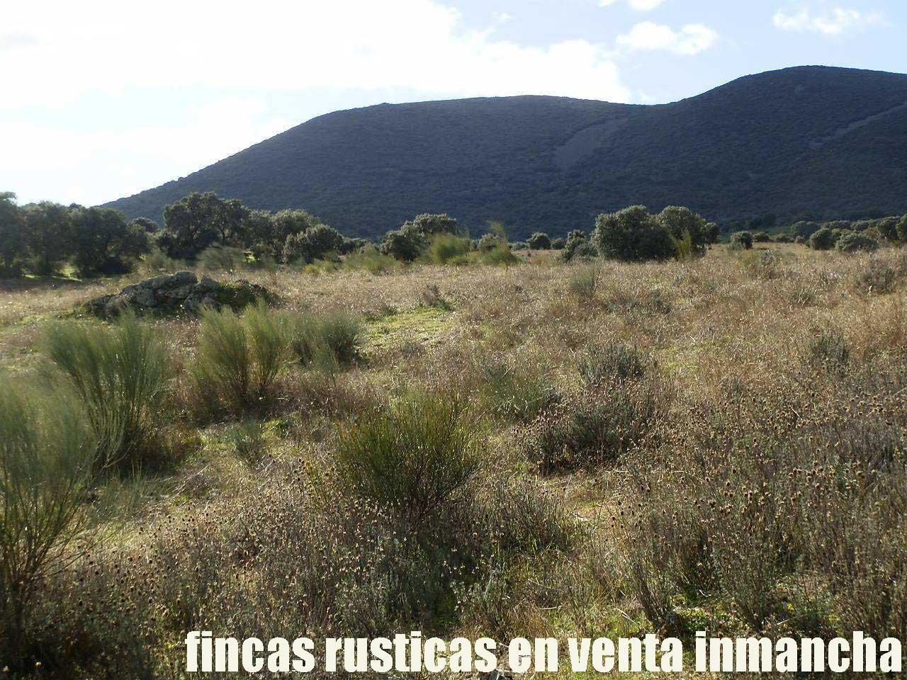 470_fincas-en-venta-35