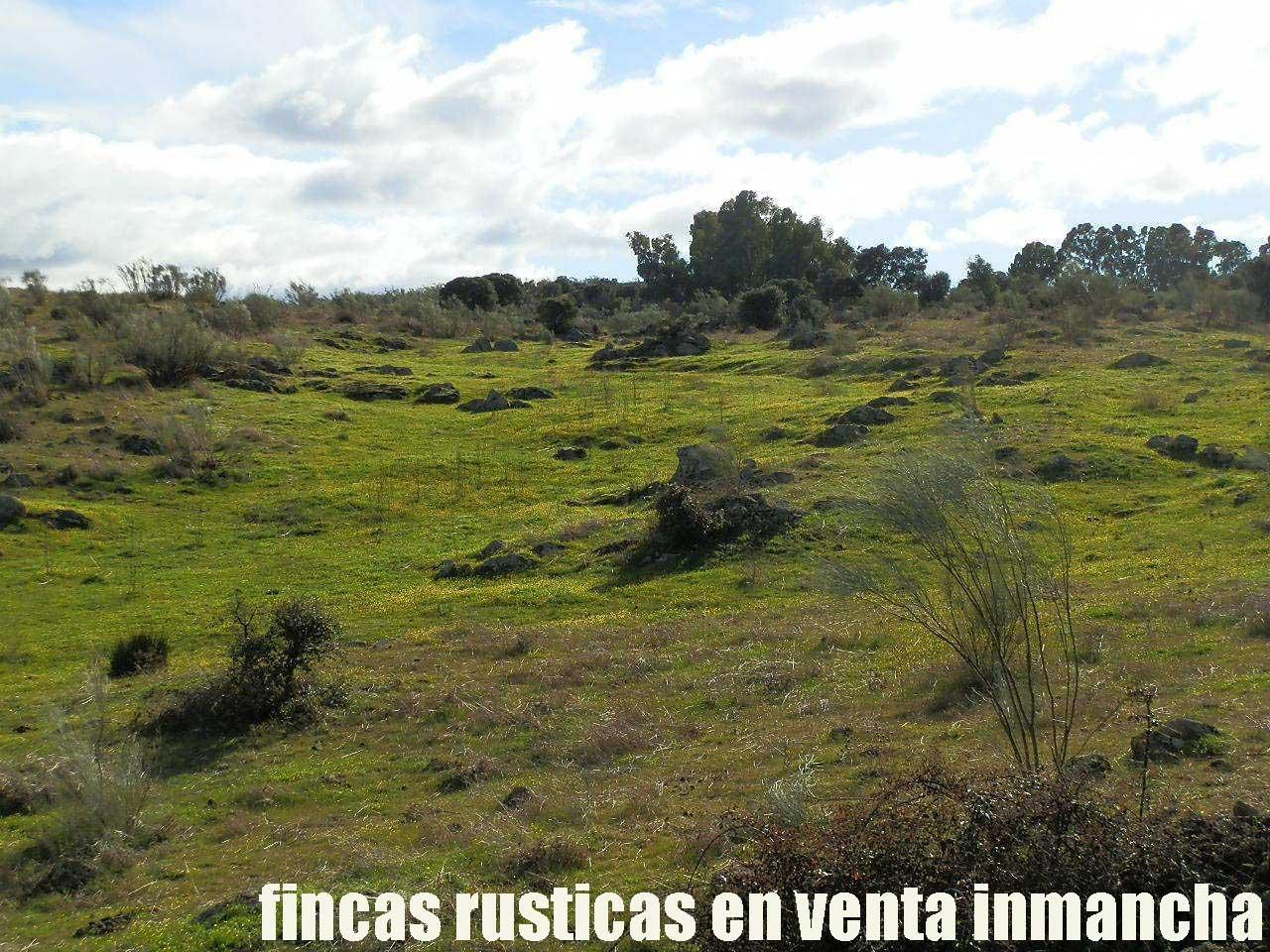 470_fincas-en-venta-36