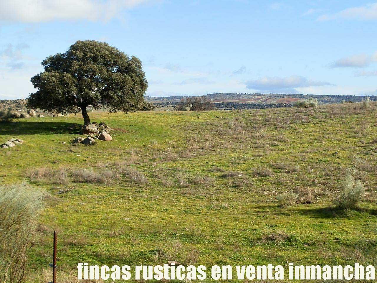 470_fincas-en-venta-38