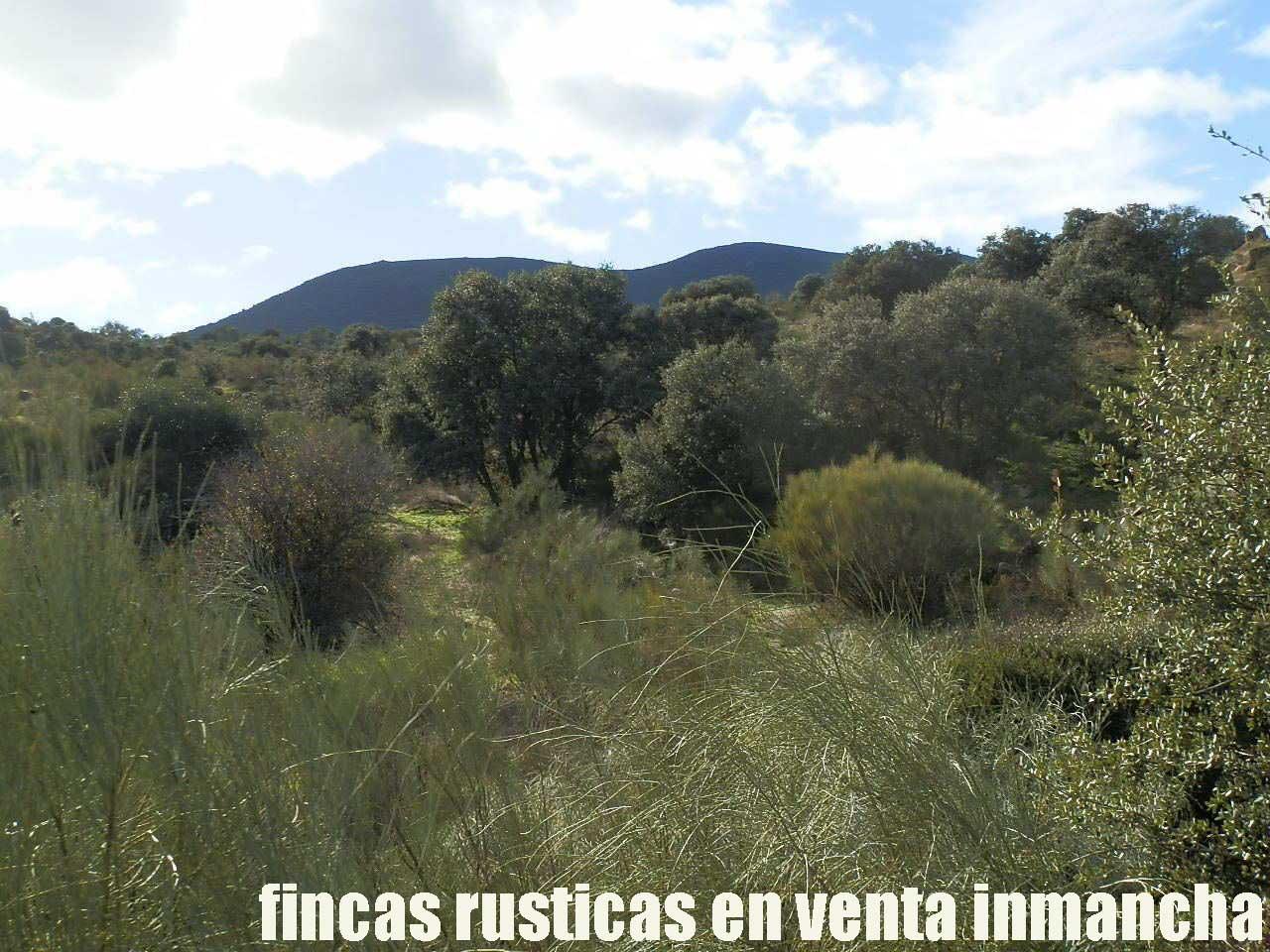 470_fincas-en-venta-40