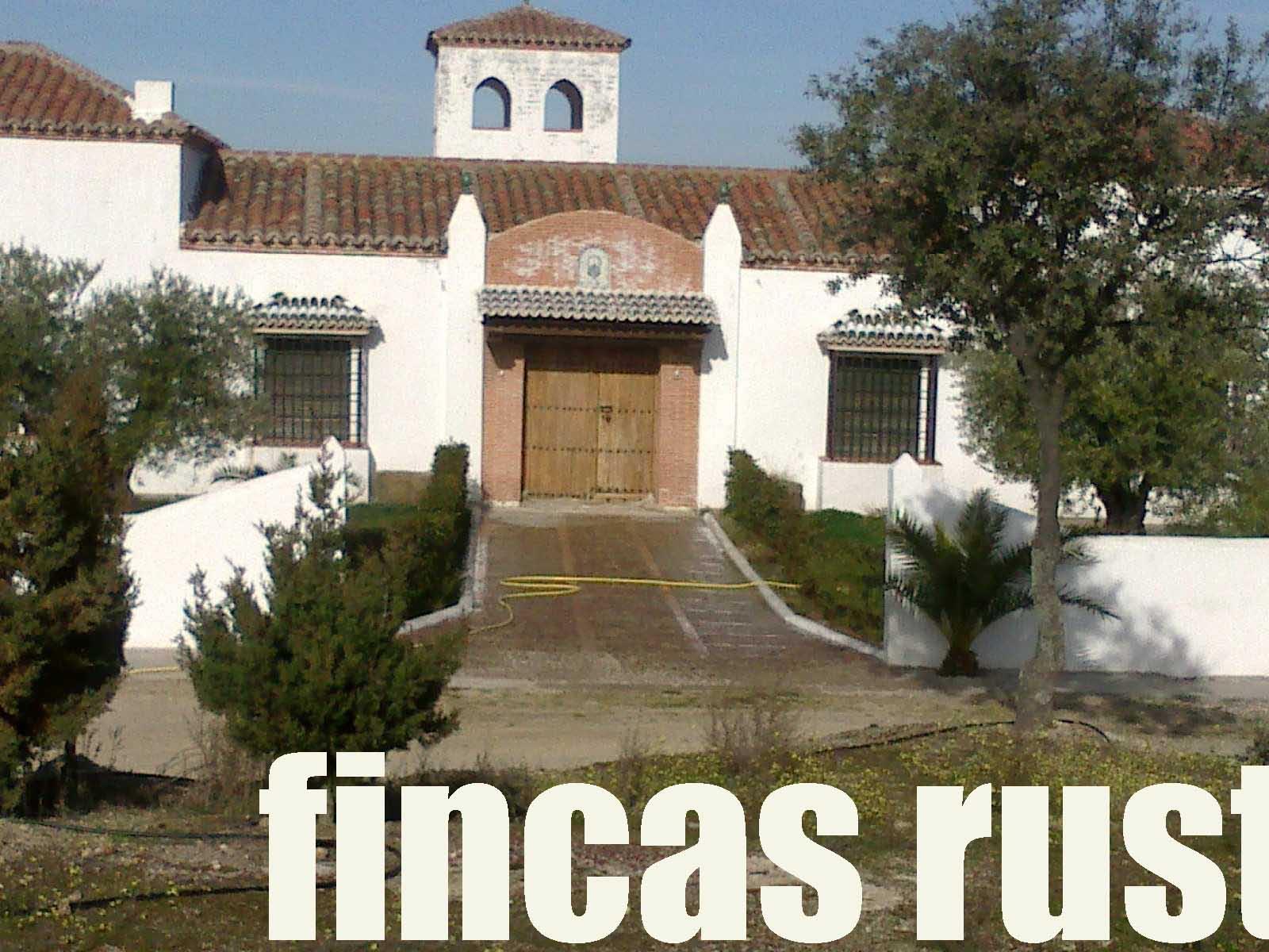 470_fincas-en-venta-6