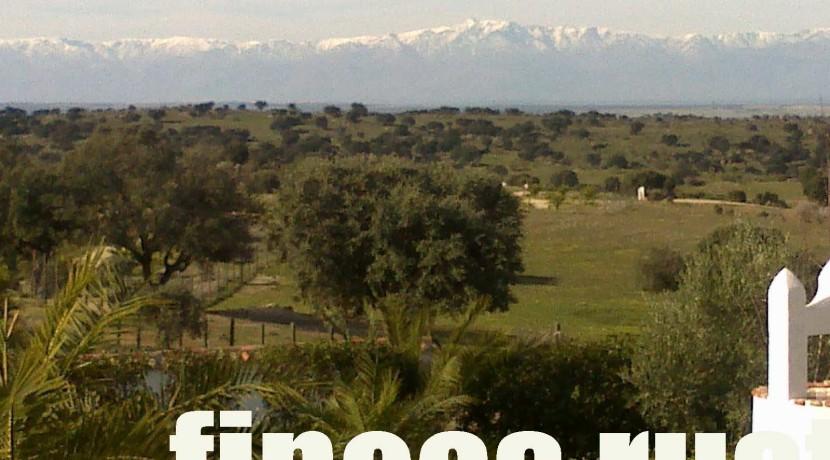 470_fincas-en-venta-8