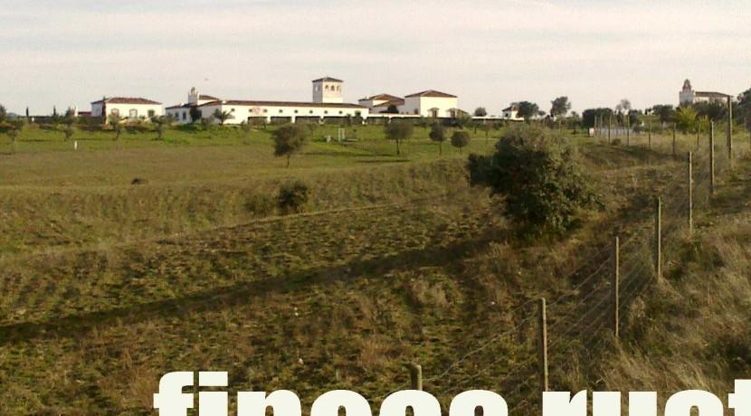 470_fincas-en-venta-9