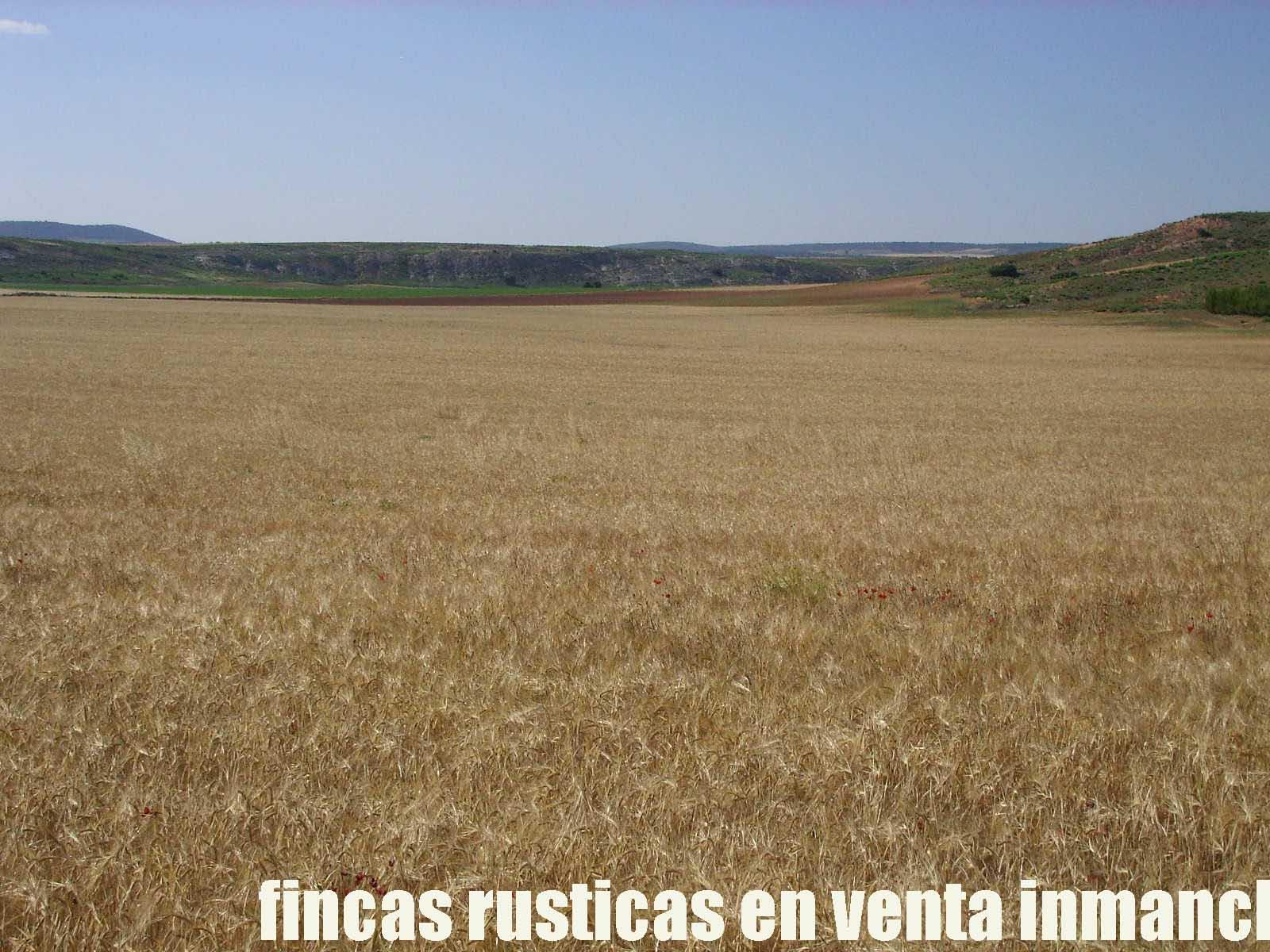 474_fincas-en-venta-3