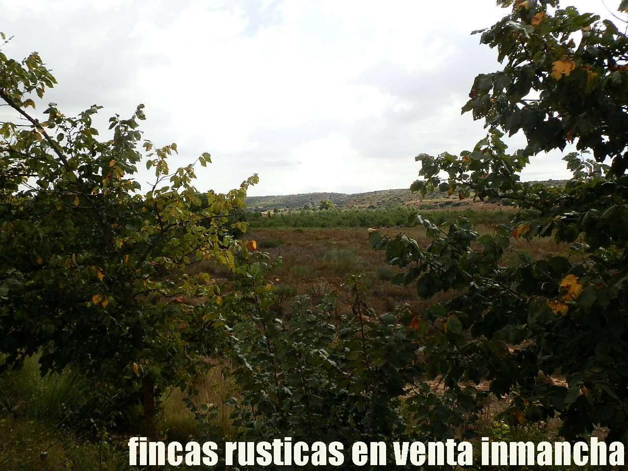 480_fincas-en-venta-011