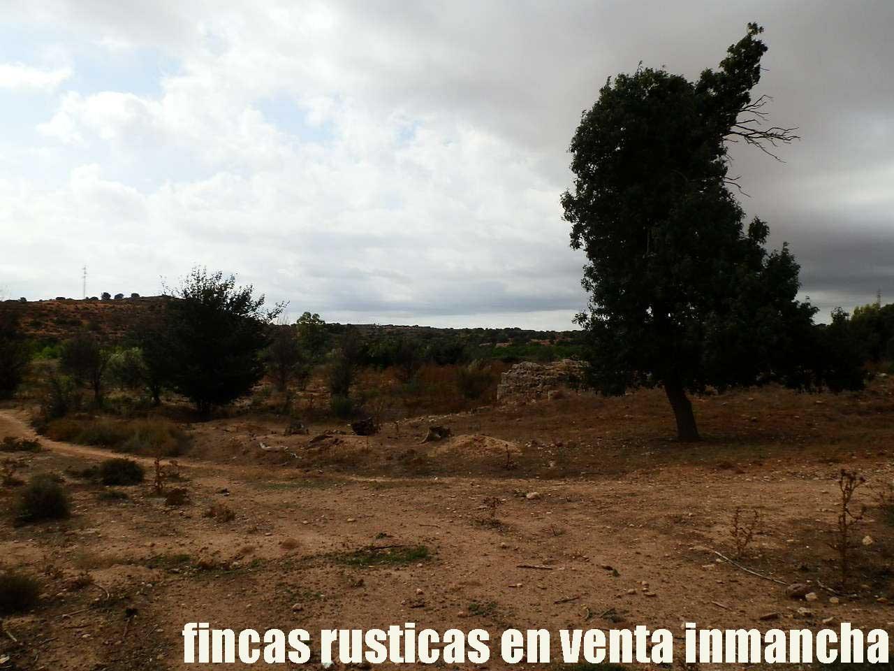 480_fincas-en-venta-013