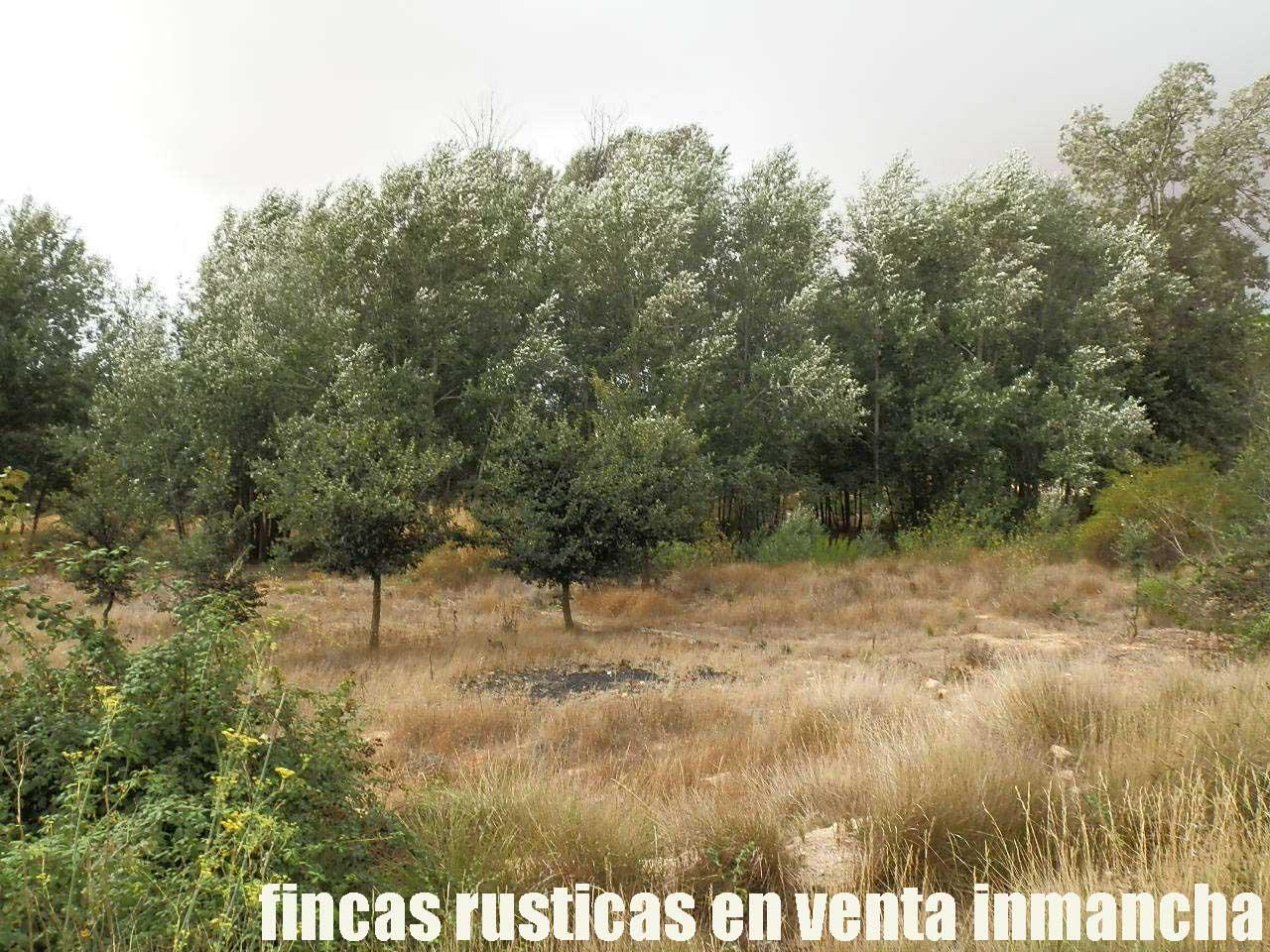 480_fincas-en-venta-017