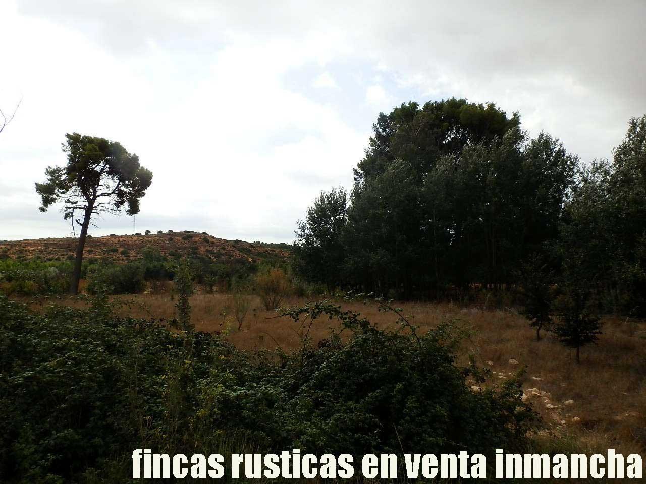 480_fincas-en-venta-018