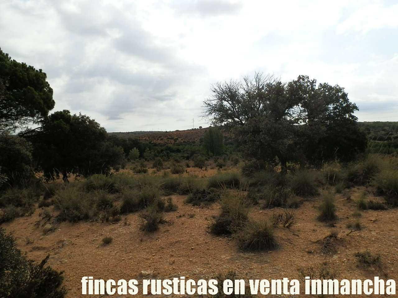 480_fincas-en-venta-021