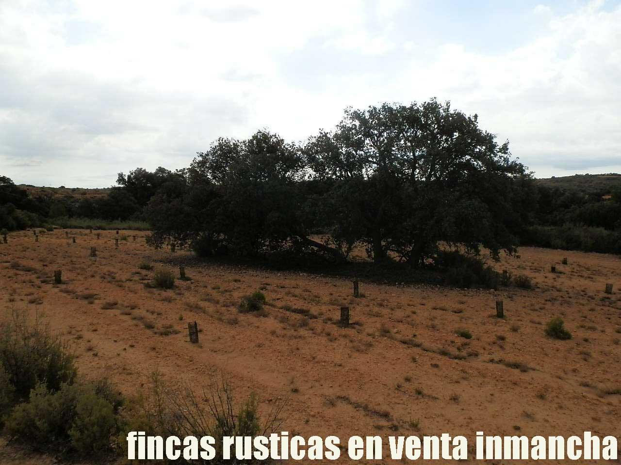 480_fincas-en-venta-026