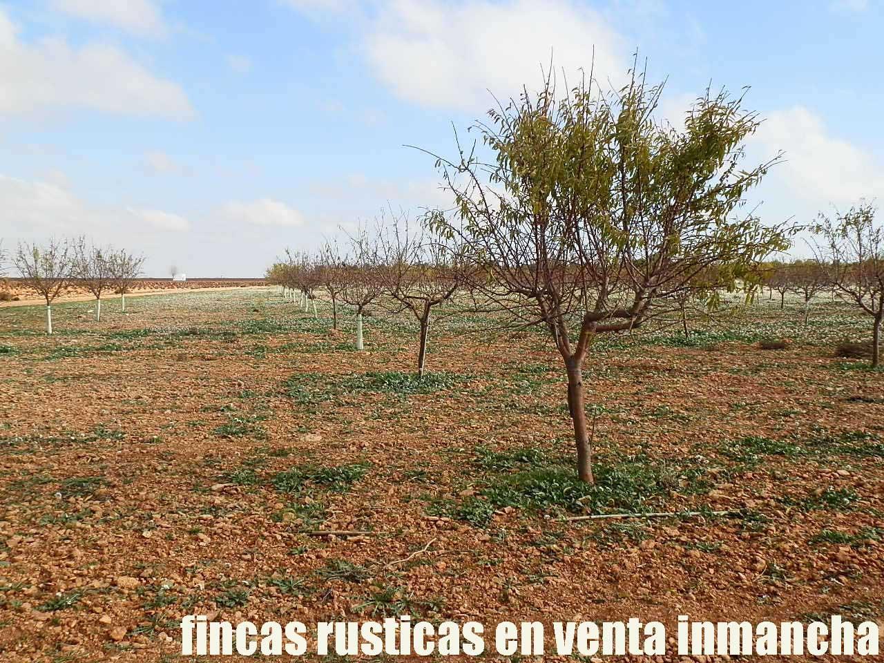 481_fincas-en-venta-87