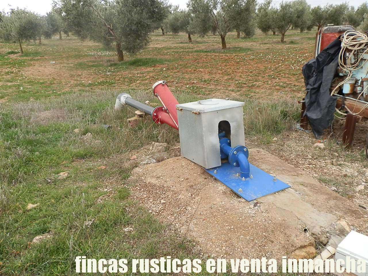 482_fincas-en-venta-75