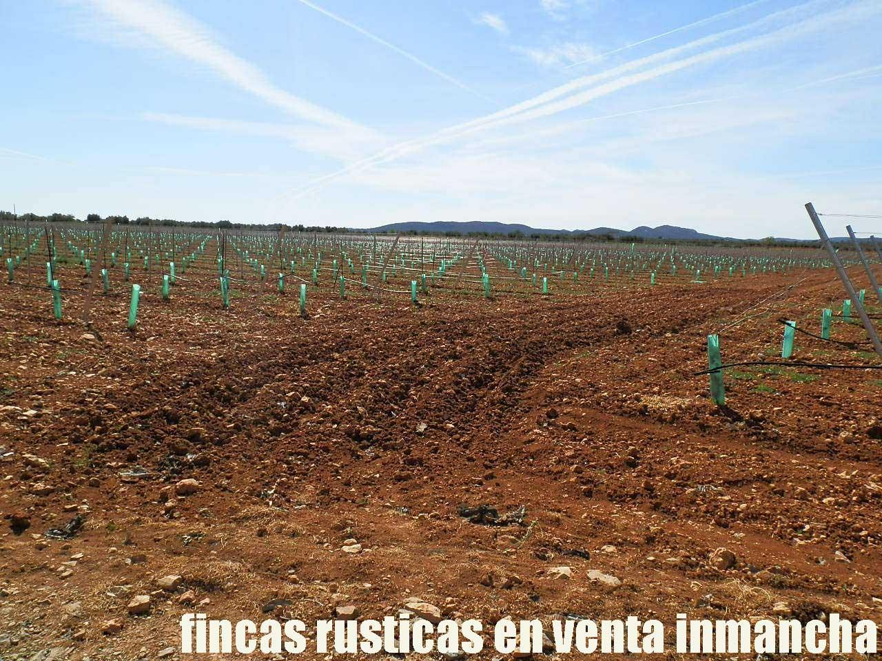 496_fincas-en-venta-0005