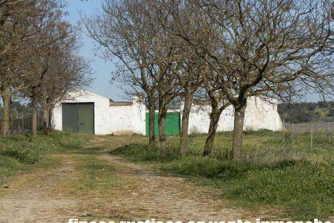 505_fincas-en-venta-053