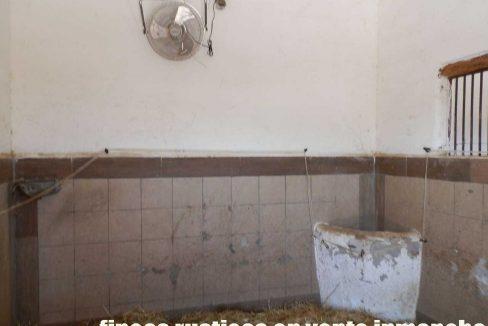 506_fincas-en-venta-10